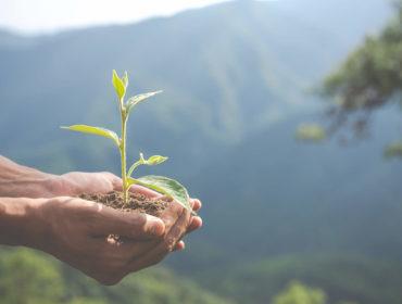 Збереження навколишнього середовища